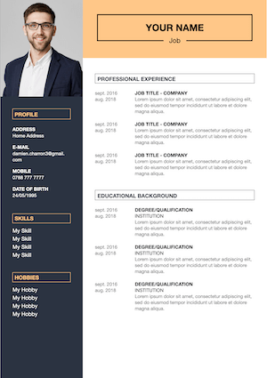 creative cv to download